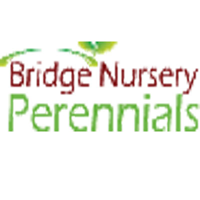 Bridge Nursery Perennials