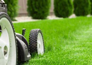 SPRING & SUMMER LAWNCARE