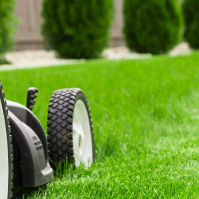 Electric and Petrol Lawnmowers