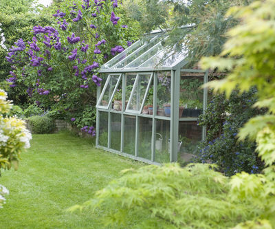 home and greenhouse may monthly tips