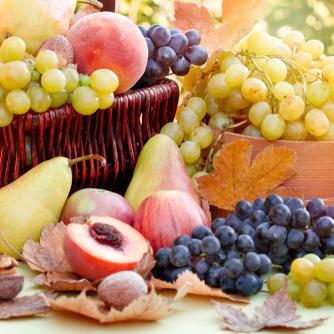 November Fruit Garden