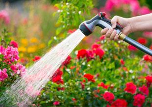 watering equipment for the garden