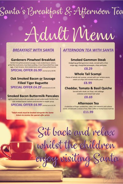 Adult tea with santa A4